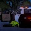 999! Officer Down!