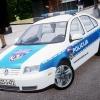 Bosnian Police