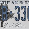 LPP Plate