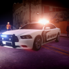 Liberty County Sheriffs Office 2013 Dodge Charger