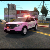 LCPD Breast Cancer Awareness 2014 Utility Explorer