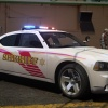 2010 Charger LCSO