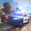 Liberty County Sheriff new 2014 Taurus