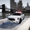 2x 2013 Liberty City Police Departement Dodge Charger Police Package