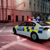 First ever NZ Police car in IV?