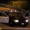 LASD/LCPD