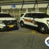 2013 Ford Utlity Pack 5.0w