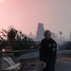 NYPD in game.