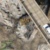 2008 Chevi Tahoe ParkRanger (17).jpg