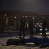 The LSPD at work