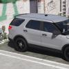 13 FPIU Gang Unit