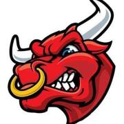 Bull55